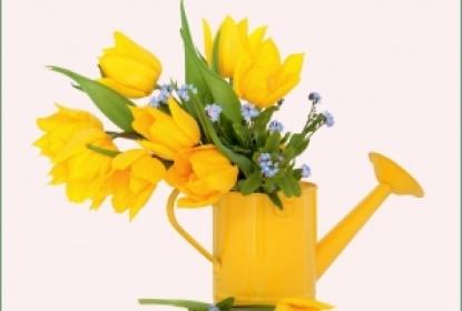 Щиро вітаємо з 8 березня