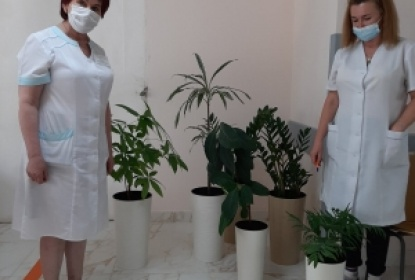 Озеленення приміщення 4 лікарні
